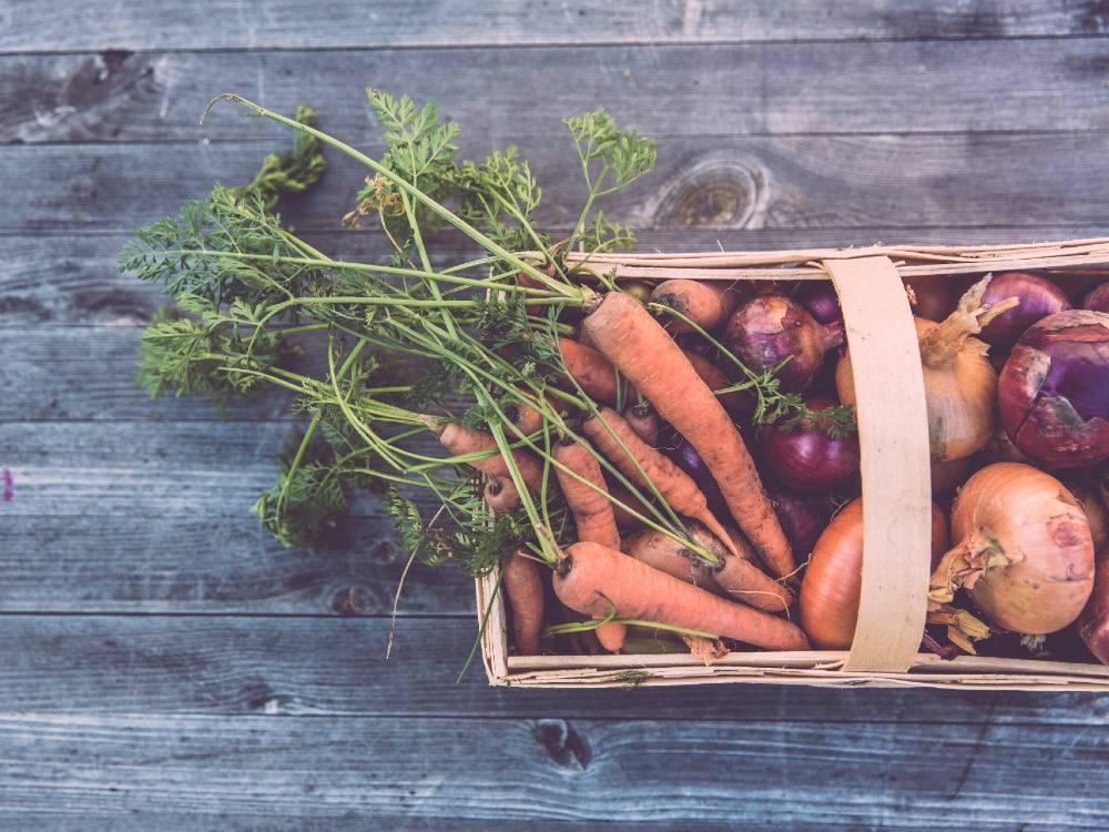 Lokalni pridelovalci zelenjave