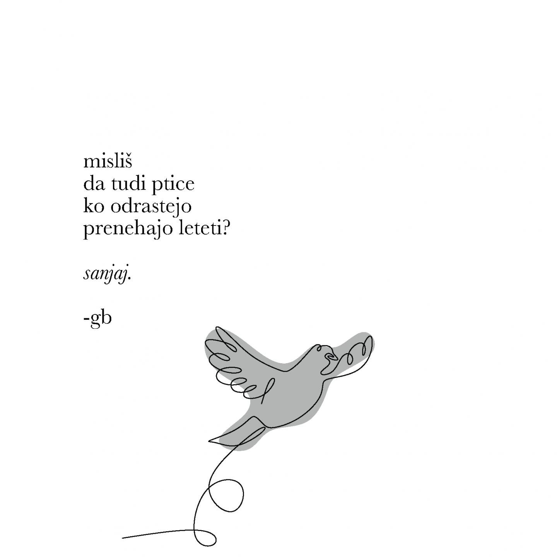 Redkobesedno-instagram poezija-65