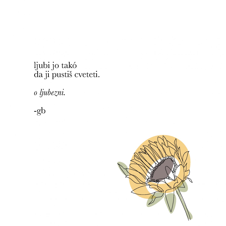 Redkobesedno-instagram poezija-91